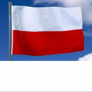Poland has ratified the CoE Convention on violence against women