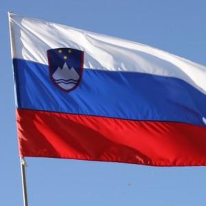 Vlada Republike Slovenije je na 69. redni seji, dne 7. 1. 2016 sprejela poročilo odbora o odpravi vseh oblik diskriminacije žensk (CEDAW)