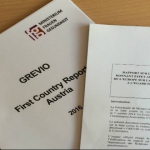 GREVIO received first state reports on implementation of the Council of Europe Convention against VAW and DV