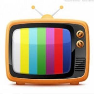 Dnevna informativna poročila na televiziji